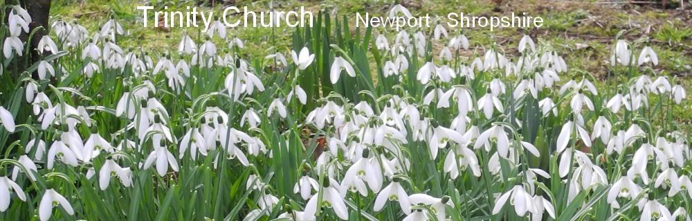 Trinity Church, Newport, Shropshire